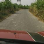 Rural by Vitesh