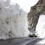 Icegate by Gurpreet