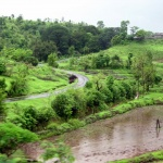 Monsoon by Ramky